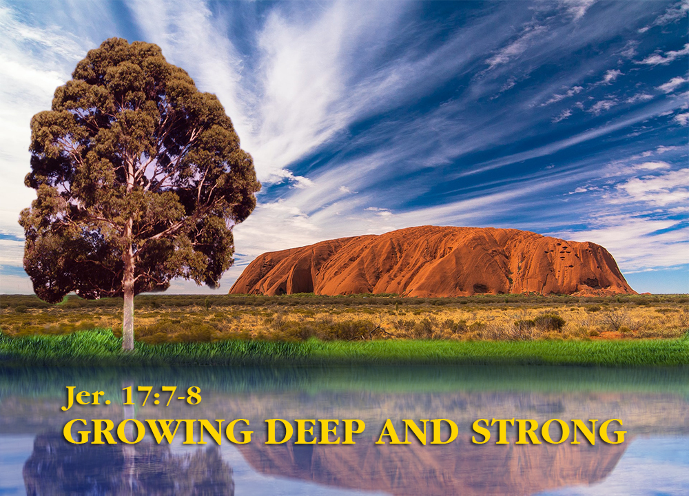 Growing Deep and Strong