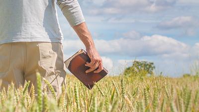 Spiritual Harvest of Souls